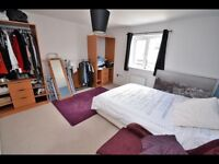 Double room to rent own bathroom.