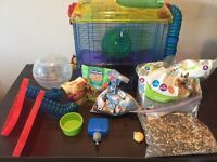 Hamster cage, ball, food and treats