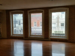 Downtown large 2 bedroom