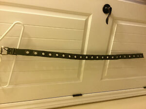 Canvas belt - one size fits small through medium, possibly large