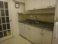 Beautiful townhouse condo for sale!!!! (Maples Area)