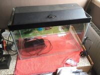 90 litre fish tank with filter