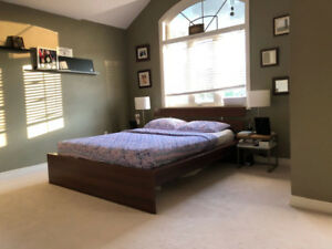 One Large Beautifully Furnished Room for Rent in Brampton