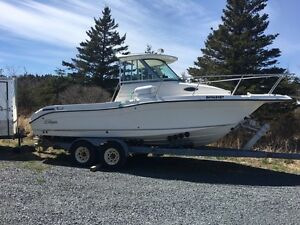 2008 seaswirl striper 2301.