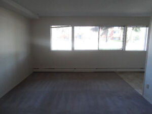 March,  Apr.  - 1/2 ! RENOVATED 1 BEDROOM suite on Whyte ave.
