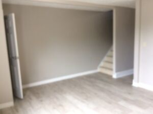 AVAILABLE, IMMEDIATELY, CENTRAL KITCHENER, ONE BEDROOM APT.