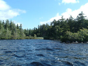 Aylesford Lake - Island Property For Sale