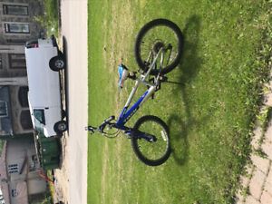 Boys Trek Bicycle Frame 14 inch,and Wheel 20 inch Good Condition