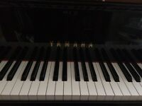 Piano Lessons For a Good Price!!