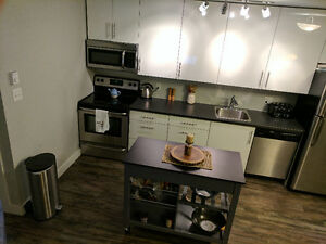NEW AFFORDABLE 1 BR UPTOWN W/D UTILITIES INCL AVAIL FEB 1