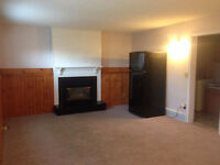 1 bedroom basement suite in woodbine sw