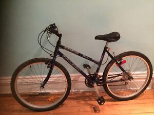 Ravine Raleigh's bike
