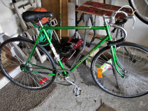 Classic Peugeot Single Speed  New tires, grips, 57cm Large frame