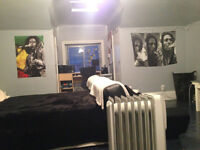 Large Attic Room Available Asap