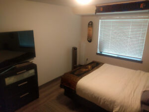 Large room available December 12th- January 5th off Commercial!!