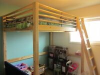 Double Loft Bed- Very Sturdy