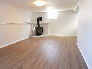 Newly Renovated Basement Apartment Georgetown