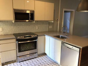 Newly Renovated 3 Bedroom Trendy Hintonburg