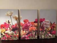 Beautiful trio of large floral canvases
