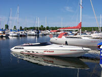WELLCRAFT SCARAB EXCELL 28