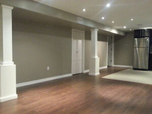 Fully Renovated 2 bedroom lower level apt on west mountain