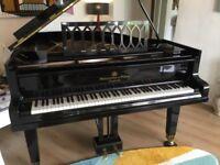 Steingraeber & Söhne Grand Piano