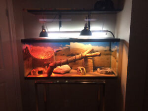 50 gallon Fish Tank and assortment of Terrarium Supplies