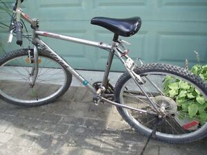 RALEIGH TARANTULA 18 SPEED