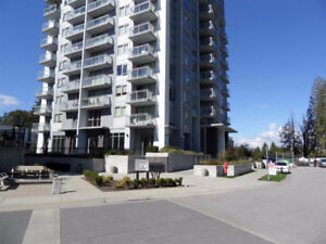 Surrey Central City One Bedroom Apt for Rent