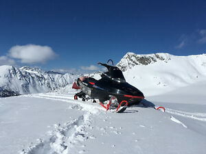 good strong sled looking for an avid rider