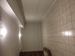 1 spacious bedroom basement apartment  available nov 1st