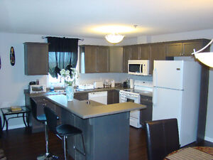 Luxury fully furnished Two & One bedroom condo from $1550