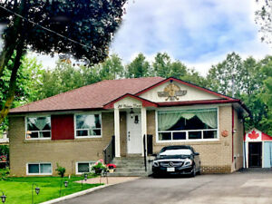 Updated 1bdr basement apartment in Aurora - Available July 1st