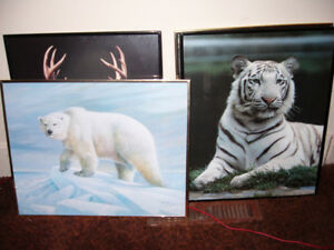 Framed Animal Posters Deer Tiger Polar Bear Wolf