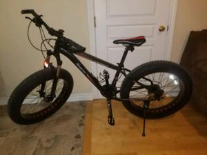 Fat Bike prix révisé