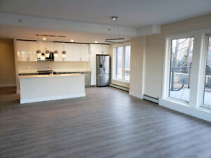 BRAND NEW BUILDING (2 BED + DEN ), VERY SPACIOUS AT BOSS PLAZA