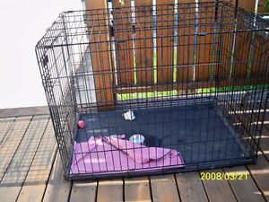 play mate kennel