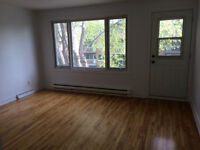 Sunny 3 Bed rooms, 5 1/2 in LaSalle for rent