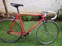 Colnago single speed bike