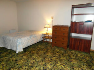 Room for a female, quiet house nr bus, skytrain, SFU March 1