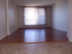 1 Bedroom 1 Bath Available March 1 All Utilities Are Included?
