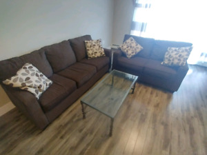 3people sofas, love seats, 4 cushions and 1 coffee table set
