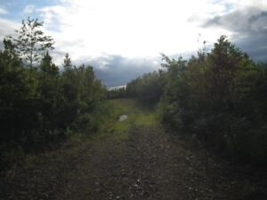 100 acres in great deer hunting country....will sell 50 acres