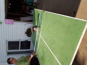 Home Made Ping Pong Table for sale
