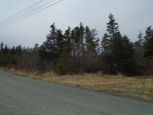 COUNTRY LIVING IN THE CITY- PRIVACY PLUS- REDUCED BY $ 20,000