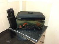 Full tank and fish
