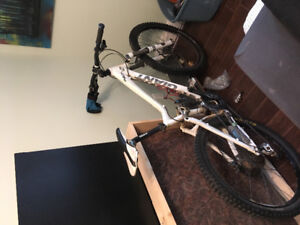 Giant reign mountain bike