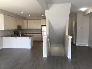 Brand New 3 Bedrooms/ Sarnia and Wonderland