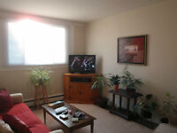 Large 2Bdr Apartment Available Immediately in Downtown Trenton