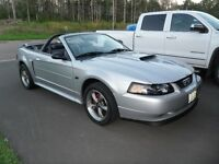 2001 Ford Mustang Convertible GT -
